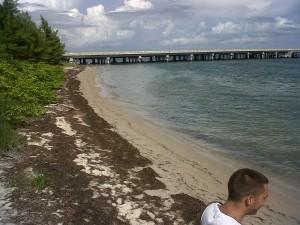 secret beach bridge