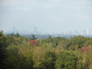 Boston skyline over foliage