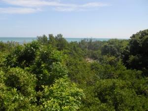 overlooking Indian Key