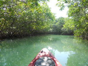 lagoon kayak