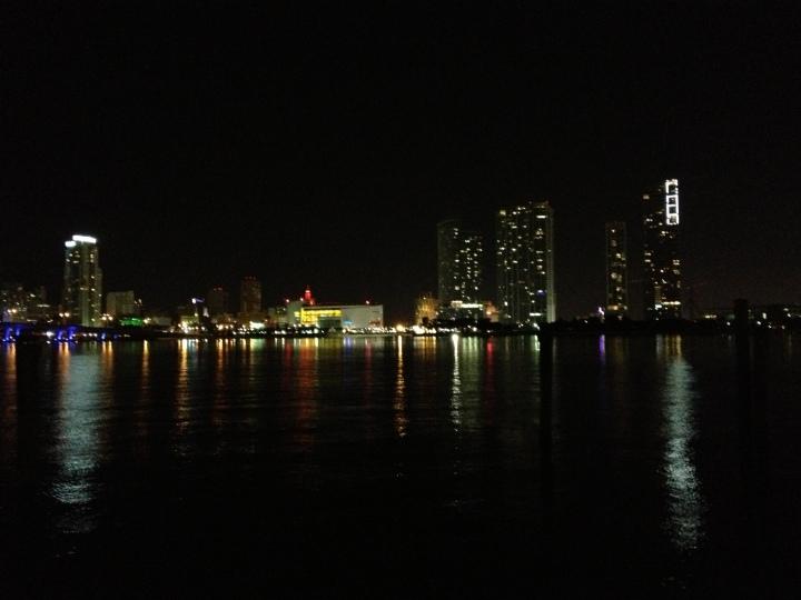 Miami Skyline 2