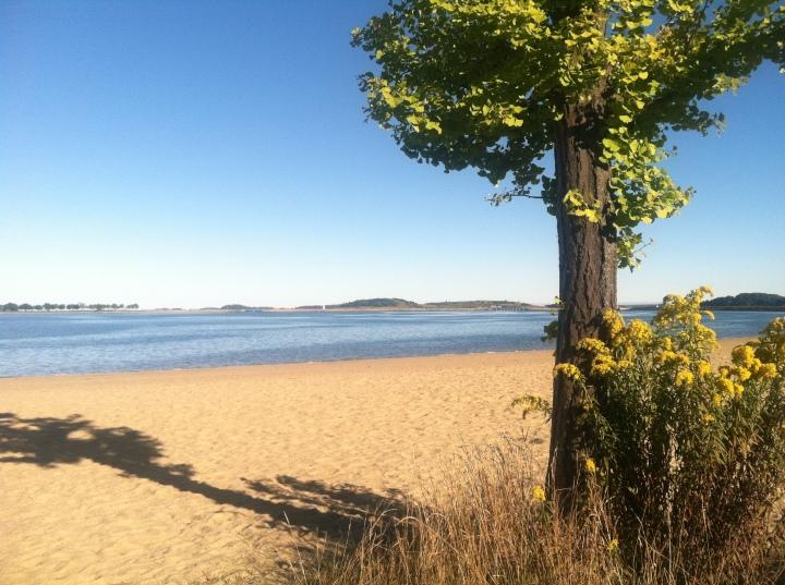 Castle Island Beach