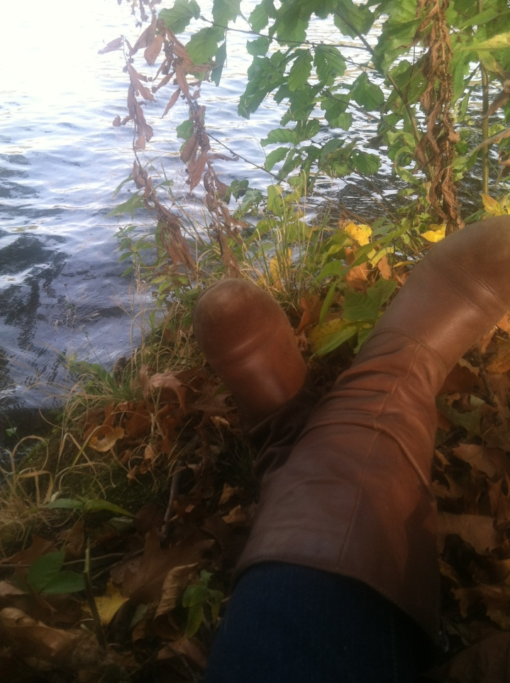 HOCR boots